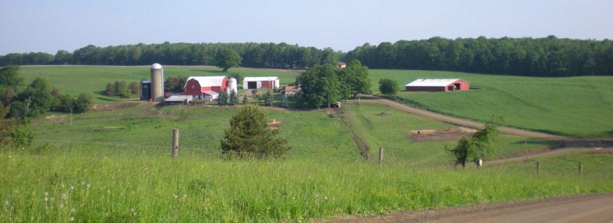 Thomas Corners Project_NY-farm