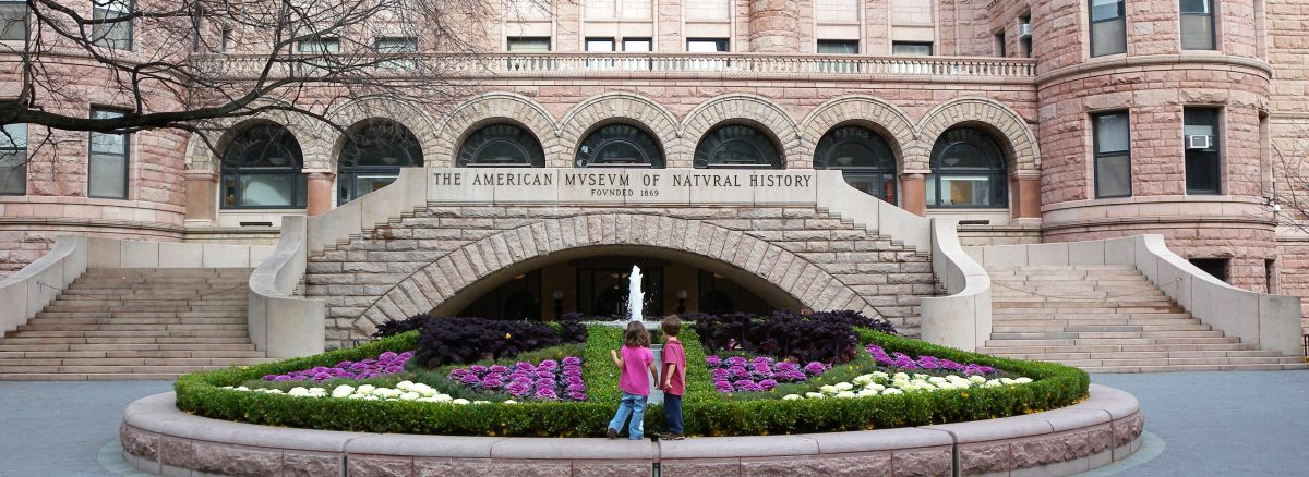 NV5 - American Museum of Natural History