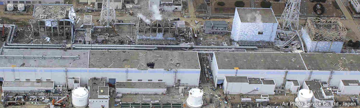 Helping Companies Respond to Fukushima Accident