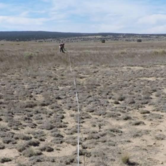 Navajo Area Uranium Mine Studies